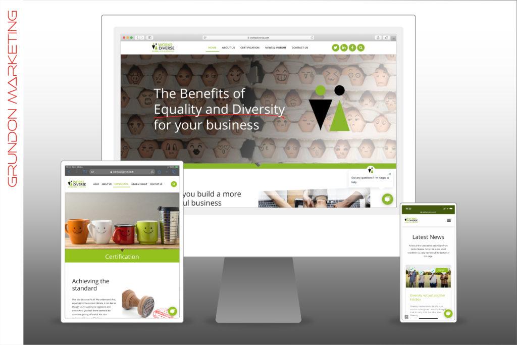Work Diverse Ltd - Website On Devices